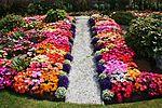 Front garden IMG 1805 (9520390614).jpg
