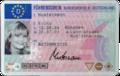 Fuehrerschein Mustermann 2001.png