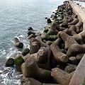 Funchal, Madeira - 2013-01-07 - 85733489.jpg
