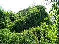 Góré - panoramio (1).jpg