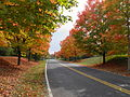 GCC entrance in fall3.jpg