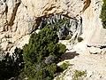 Garric i savina forat de la Vella P1070502.JPG