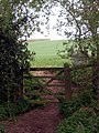 Gate by opposite the Dumble - geograph.org.uk - 775597.jpg