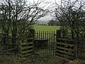 Gate in Hedgerow near Page Fold - geograph.org.uk - 1671844.jpg
