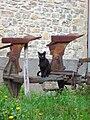 Gato negro alto d'un aladro.jpg