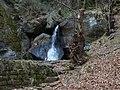 Gelobtbachtal, údolí Klopotského potoka - panoramio (42).jpg