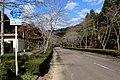 Gifu Prefectural Road Route 59 (Seki Mugegawacho Taniguchi).jpg
