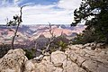 Grand Canyon National Park (South Rim).jpg