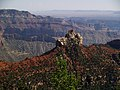 Grand Canyon desde Roosevelt Point. 03.jpg