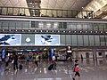 HK 赤鱲角 Chek Lap Kok 香港國際機場 Hong Kong Int'l Airport Terminal T1 August 2019 SSG 33.jpg