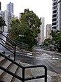 HK ML 半山區 Mid-levels 地利根德里 Tregunter Path May Road February 2020 SS2.jpg