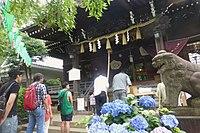 Hakusanjinja-bunkyoku-main-a-June13-2015.jpg