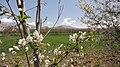 Hamadan Province, Do Rudan, Unnamed Road, Iran - panoramio (2).jpg