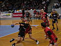 Handball Men French Championship 1.jpg
