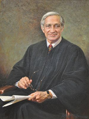 Harold Leventhal (judge) - Harold Leventhal, U.S. Court of Appeals for the District of Columbia Circuit. Portrait by Peter Stevens.