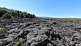 Hawaii Volcanoes National Park (503997) (22253649401).jpg