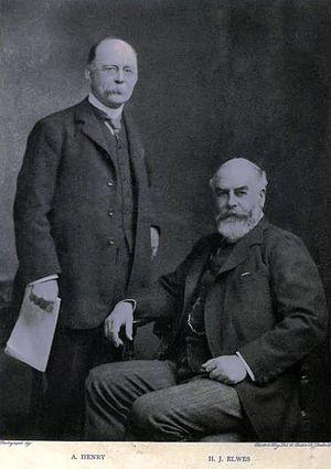 Henry John Elwes - Augustine Henry (left) and Elwes, c. 1906