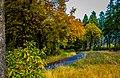 Herbstbeginn im Ebbegebirge, Sauerland (10501608294).jpg