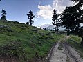 Hiking to peaks, Boyun village Swat.jpg