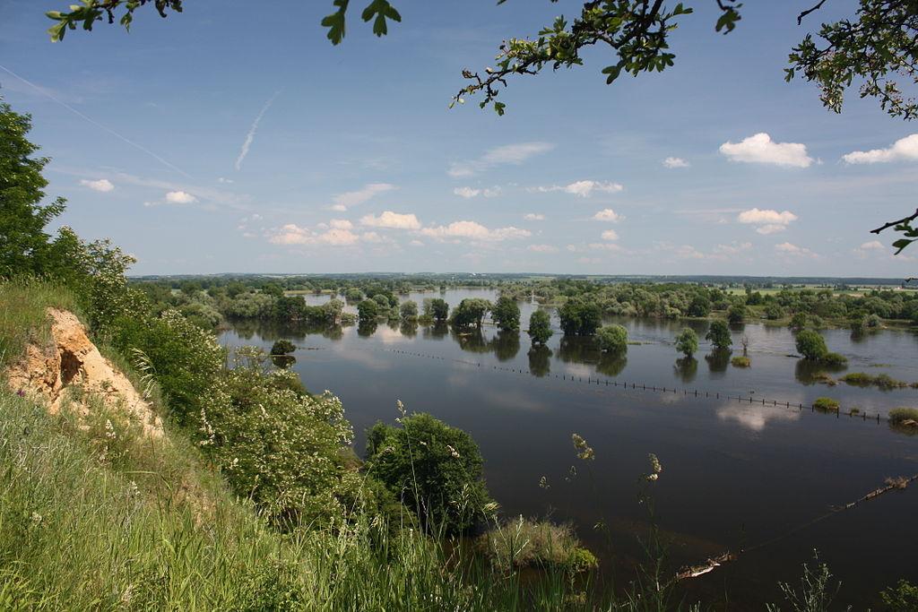 Hochwasser im NSG Oderberge Lebus