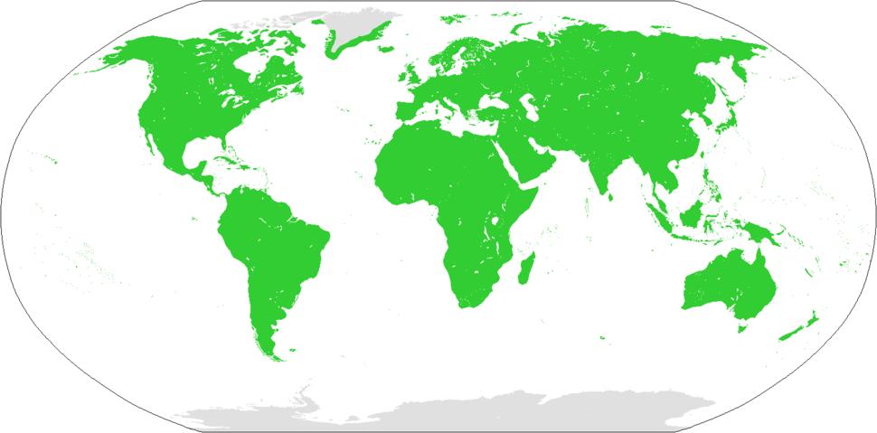 Distribución do Homo sapiens (verde)