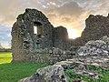 Hore Abbey, Caiseal, Éire - 46585721831.jpg