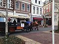 Horse-drawn Vehicle in Huis Ten Bosch 20140118.JPG