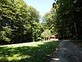 Hradný vrch Veľký Šariš 19 Slovakia.jpg