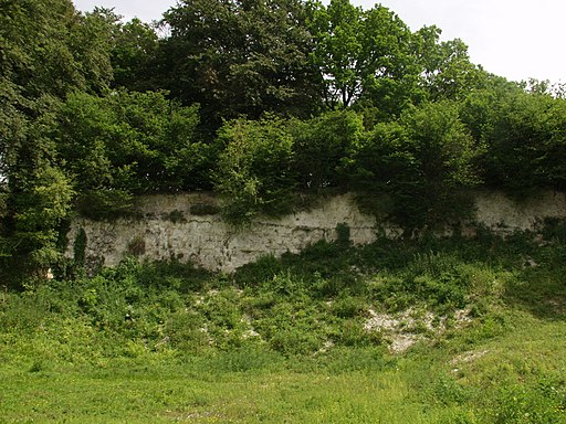 Hurley Chalk Pit - geograph.org.uk - 2214328
