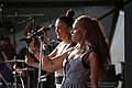 I-Wolf and The Chainreactions Donauinselfest 2014 38.jpg