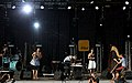 I-Wolf and The Chainreactions Donauinselfest 2014 47.jpg