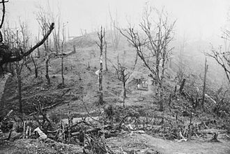 Battle of Kohima - View of the Garrison Hill battlefield, the key to the British defences at Kohima.