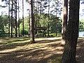 Ignalinos sen., Lithuania - panoramio (19).jpg
