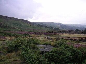 On Ilkla Moor Baht 'at - Image: Ilkla Moor heather