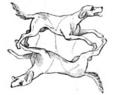 Illustrirte Zeitung (1843) 15 240 3 Die Auflösung der Zeichnenaufgabe No 1.PNG