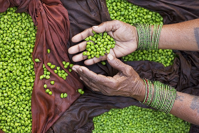 File:India - Varanasi green peas - 2714.jpg