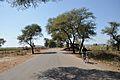 Indian National Highway 86 - Madhya Pradesh - 2013-02-21 4238.JPG