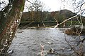 Into the Wye - geograph.org.uk - 1040685.jpg