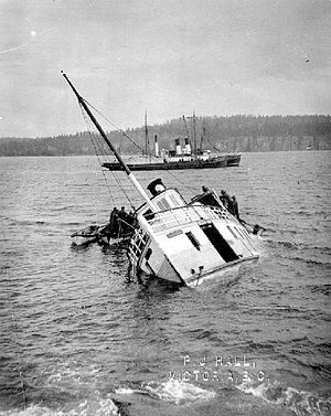 Sechelt (steamboat) - Wreck of Iroquois, a steamer similar to Sechelt which sank under similar circumstances, off Sidney, BC, April 1911
