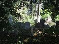 Israelitischer Friedhof Währing Sep 2006.jpg