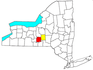 Ithaca-Cortland CSA