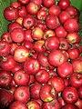 Jablka (7).jpg