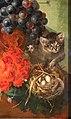Jan van os, natura morta con frutta e fiori, olanda 1790 ca. 02 gatto e nido.jpg