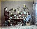 Japon-1886-05.jpg