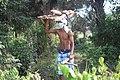 Jeune transportant des fagot de boie 24.jpg