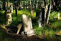 Jewish cemetery Otwock 10761809.jpg