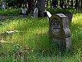 Jewish cemetery Otwock 10769207.jpg