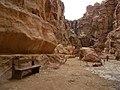 Jordan. Drum prin Defileu catre Petra. DSCN1030.jpg