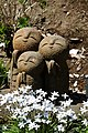 Kamakura 2011-04 (5711708595).jpg