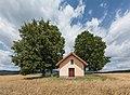 Kapliczka w Jaszkowej Górnej - 4.jpg